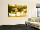 Light on the Water Wall Mural by Greg Elms