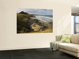 Overhead of Wild Coast Wall Mural by Ariadne Van Zandbergen
