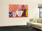 Hammocks on Wall of Souvenir Stand Wall Mural by Guylain Doyle