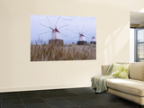 Portela Windmills at Dusk Wall Mural by Holger Leue