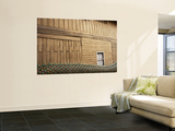 Dragon's Body and Wooden Teak Wall Wall Mural by Oliver Strewe