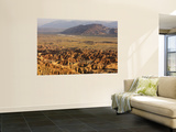 Borrego Badlands from Font's Point Wall Mural by Carol Polich