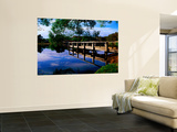 Small Jetty at Lake Daylesford Wall Mural by Glenn Van Der Knijff