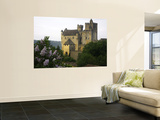 Chateau of Beynac with Lilac Bush in Foreground Wall Mural by Barbara Van Zanten