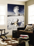 Buffalo Skull and Old Faithful Geyser Wall Mural by Douglas Steakley
