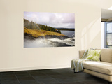 Tannforsen Waterfall and Nature Reserve Wall Mural by Christer Fredriksson