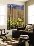 Vines in Winter at Carmel Road's Valley View Vineyard Wall Mural by Brent Winebrenner