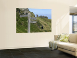 Signposts, Tintagel Castle Wall Mural by Doug McKinlay