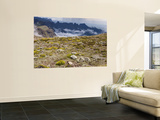 View from Cleft Peak Wall Mural by Ariadne Van Zandbergen