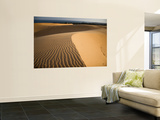 Sand Dunes Wall Mural by Micah Wright