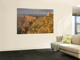 Desert View Watchtower Wall Mural by John Elk III