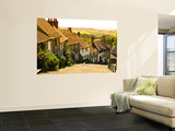 Gold Hill Houses and Surrounding Countryside Wall Mural by Glenn Beanland
