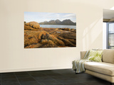 Coles Bay to the Hazards in Freycinet National Park Wall Mural by Andrew Bain