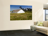 Historic Farm House Surrounded by Wildflowers at End of Pierce Point Road Wall Mural by Emily Riddell