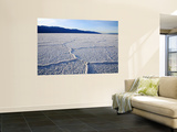 Encrusted Salt Flats at Badwater Basin Wall Mural by Feargus Cooney