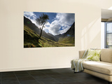 The 'Lost Valley of Glencoe' Wall Mural by Feargus Cooney