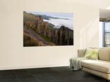 View from Roland's Cave at the Top of Organ Pipes Pass Wall Mural by Ariadne Van Zandbergen