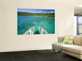 Clear Waters Off Orpheus Island Wall Mural by Paul Dymond