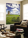 Lily Windmill with Stirling Ranges in Distance. Wall Mural by Orien Harvey