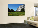 Yosemite Valley from Valley Floor Wall Mural by Wade Eakle