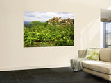Village on Rocky Spur Overlooking the Bave Valley Wall Mural by Barbara Van Zanten