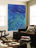 Aerial of Hardy Reef Offshore from Whitsundays Islands Wall Mural by Philip Game