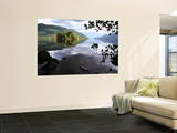 Tarbet Isle on Loch Lomond, Loch Lomond and the Trossachs National Park Wall Mural by Feargus Cooney