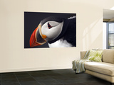 Puffin on Snaefellsnes Peninsula Wall Mural by Douglas Steakley