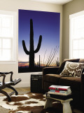 Saguaro Cactus in Tucson Mountain Park Wall Mural by Richard Cummins