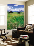 Alpine Meadow with Sasso Lungo, Alpe Di Susi, Dolomites Wall Mural by John Elk III
