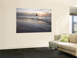 Catamaran at Sunset Seen from Bucuti Beach Resort on Eagle Beach Wall Mural by Holger Leue