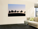 Desert Just Outside Timbuktu, Tuareg Camels at Sunset Wall Mural by Tony Wheeler