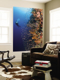 Diver With Light Next To Vertical Reef Formation, Pantar Island, Indonesia Mural Premium por  Jones-Shimlock