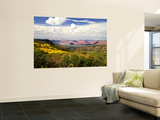 Castle Valley From La Sal Mountains With Fall Color in Valley, Utah, USA Wall Mural by Bernard Friel