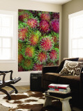 Rambutan for Sale at or Tor Kor Market Wall Mural by Austin Bush