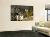 Predjama Castle Wall Mural by Richard Nebesky