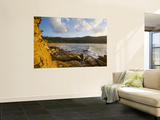 Hawksbury Sandstone in Foreground at Maitland Bay Wall Mural by Manfred Gottschalk