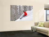 Snowboarder Enjoying Deep Fresh Powder at Brighton Ski Resort Mural por Paul Kennedy