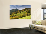 Valley on Southern Pohorje Mountain Range Wall Mural by Richard Nebesky