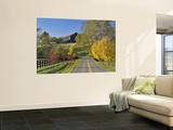 Rural Road Through Bluegrass in Autumn Near Lexington, Kentucky, USA Wall Mural by Adam Jones