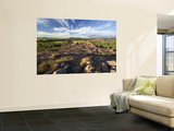 Ubirr Outcrop Wall Mural by Paul Dymond