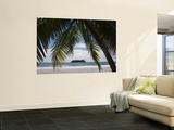 Palm Tree on Beach Wall Mural by Christer Fredriksson