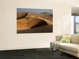 Sand Dunes, Rub Al Khali Desert Wall Mural by Aldo Pavan