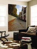 Groeninge Street with Autumn Leaves Wall Mural by Damien Douxchamps