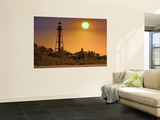 Sun Rising Above Lighthouse Park Wall Mural by Mark Newman