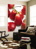 Rose Apples for Sale at a Market. Wall Mural by Austin Bush