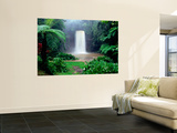 Millaa Millaa Falls Wall Mural by Paul Dymond