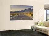 Avawatz Mountains over Silurian Valley in Mojave Desert from Highway 127 Wandgemälde von Witold Skrypczak
