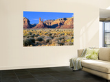 Pinnacles and Buttes in Valley of the Gods, Monument Valley, Utah, USA Wall Mural by Bernard Friel