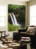 Wailua Falls Wall Mural by Micah Wright